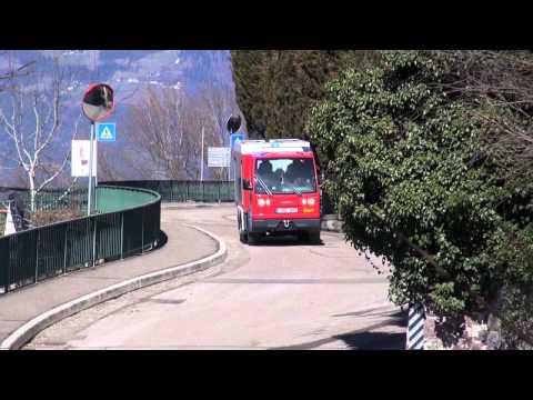 Fire Ant in Zuid Tirol