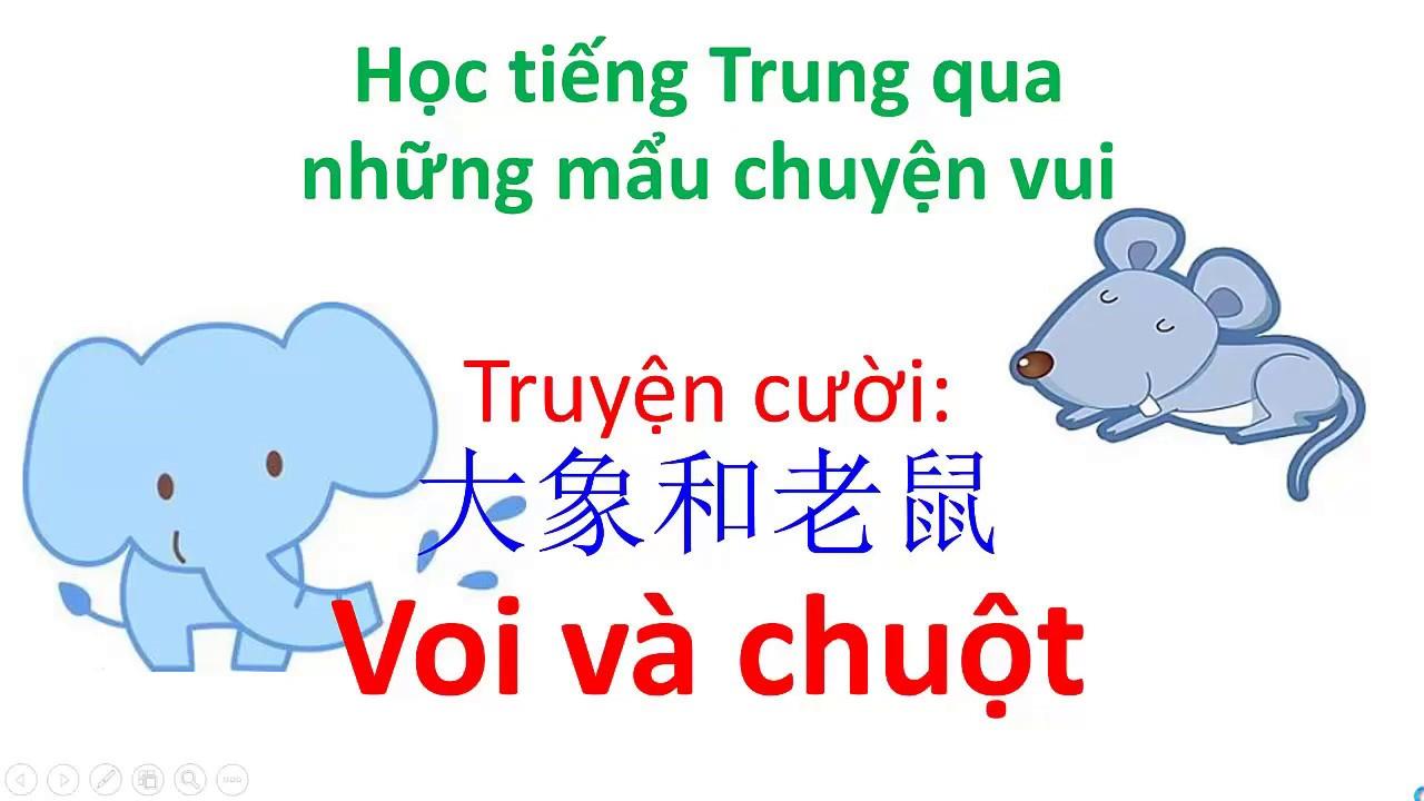 Học tiếng Trung qua những mẩu chuyện cười – Câu chuyện 大象和老鼠 Voi và Chuột