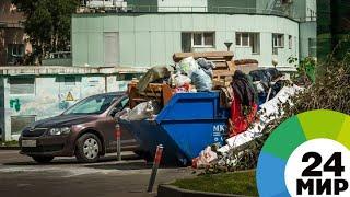 За решение проблемы мусора в Челябинске взялась прокуратура - МИР 24