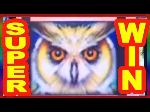 ** SUPER BIG WIN ** TIMBER WOLF n others ** SLOT LOVER **