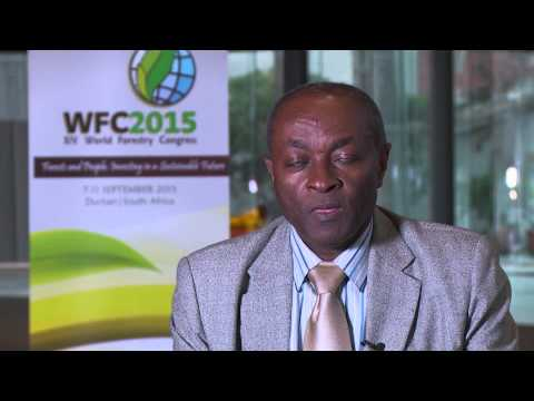 World Forestry Conference 2015 - Durban - Professor Godwin Kowero