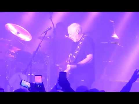 David Gilmour  -  Comfortably Numb (featuring Purple Rain )