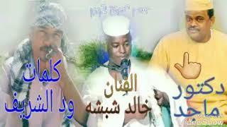 الفنان خالد شبشه كلمات ود الشريف