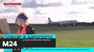 В Екатеринбурге художники коллективно творили на летном поле - Москва 24
