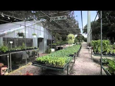 Fanick's Garden Center | Nursery | San Antonio, TX
