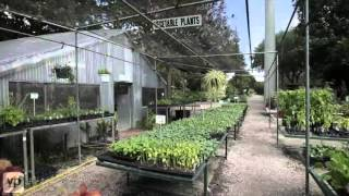 Fanick S Garden Center Nursery San