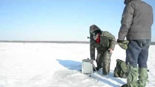 Рибалка в Білорусі на Вилейском водосховищі