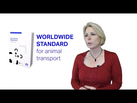 How to comply with live animal handling and transport regulations?