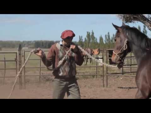 poesia-renato-jaguarÃo---o-adeus-ao-cavalo-solidÃo