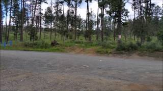 Byron Ligon and Grindstone Disk Golf Course Ruidoso New Mexico