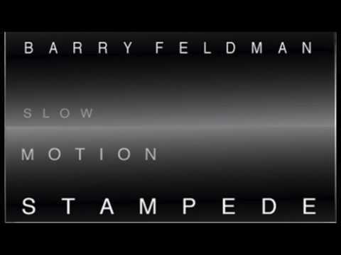 Slow Motion Stampede  Barry Feldman