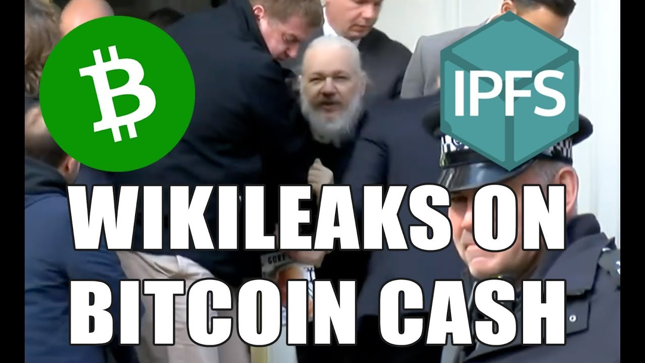 Using Bitcoin Cash + IPFS to Store Wikileaks Files
