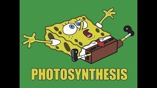 Photosynthesis (Spongebob beat) BIBBV2  TreyLouD