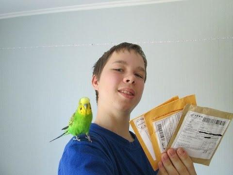 Как забрать Китайскую Посылку с почты Без Паспорта (Школьнику)