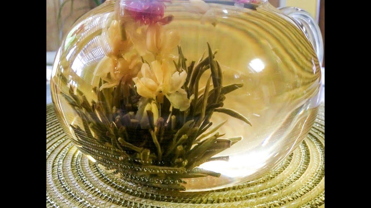 Beautiful blooming tea flower opening time lapse youtube mightylinksfo