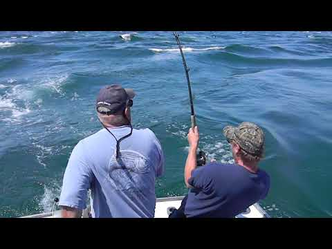 Fishing the Rips at the Vortex - Nantucket MA - Courtesy of Striper Sport Fishing Cape Cod