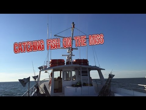 Catching Fish On The Miss (Belmar Princess)