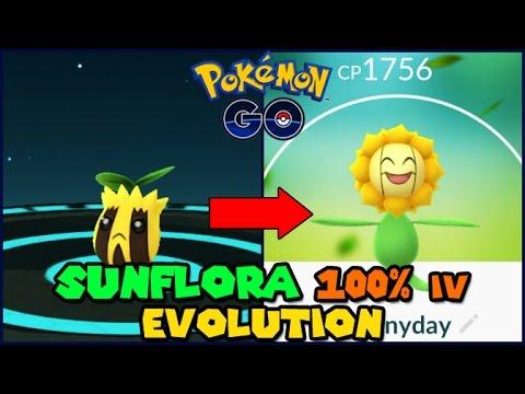 Sunkern Evolution 58047 MOVIEWEB