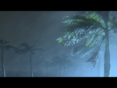 Fall into Sleep Instantly with Heavy Rain, Strong Wind & Awful Thunderstorm Sounds in Stormy Night
