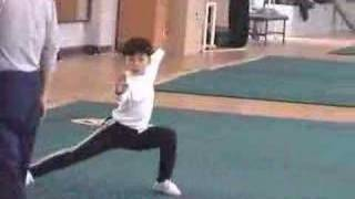 Wushu Beijing Kids