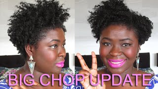 4a 4b 4c Natural Hair | Update 19 months post BIG CHOP, Cuts, Nape Growth etc