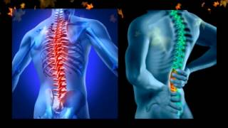 Chiropractor Provo | The Preferred Chiropractor in Provo Utah
