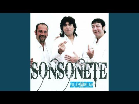 sonsonete 2013