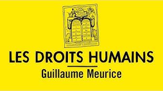 Comprendre la Déclaration universelle des droits de l'homme avec Guillaume Meurice