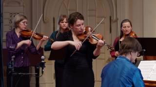 Vivaldi Four Seasons: Summer (L'Estate), Allegro; Cynthia Freivogel, Voices of Music,  RV 315 4K UHD