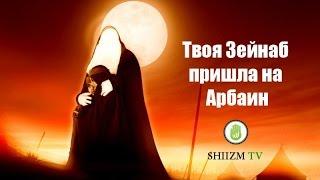 Твоя Зейнаб пришла на Арбаин