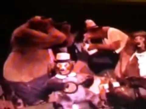walt disney world country bear jamboree and enchanted tiki room under new management show