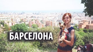 Барселона / Barcelona / Woof travel — путешествия с собакой на машине