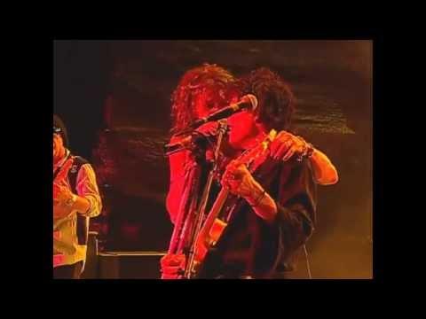 Aerosmith Baby, Please Don't Go Costa Rica 2010 - PRO SHOT