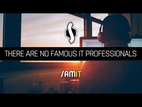 There Are No Famous IT Professionals