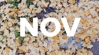 NOVEMBER / ONE SEC EVERYDAY