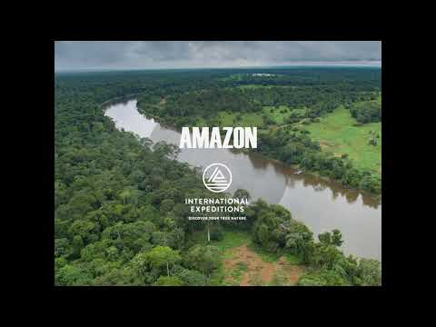 Exclusive Training for Travel Professionals: IE's 2018 Amazon River Cruise