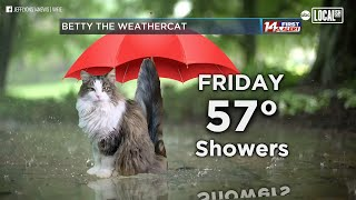 'the outpouring for this silly cat has been crazy!' when a weatherman's joined in on his weather forecast from home, people all over the world instantly ...
