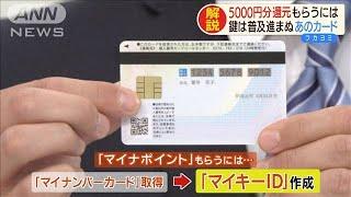 還元率25% 最大5000円「マイナポイント」って?(19/11/27)