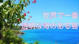 夏っ! 世界で一番キレイな海 これが聖地ロタ島だ!!