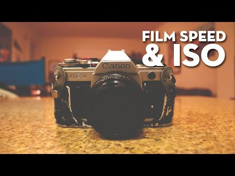 Film Speed & ISO Tutorial For Beginning Photography