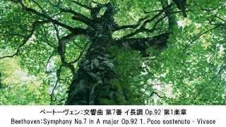 力強いクラシック名曲集1/3・Powerful Classical Music Collection1/3(長時間作業用BGM)