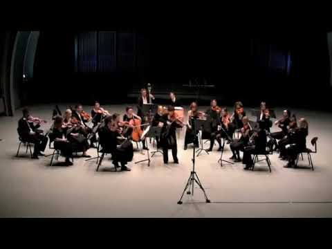 Concerto for Viola and String Orchestra in G Major: Movement 2 by Telemann