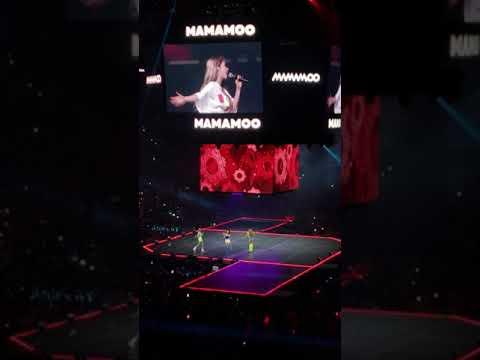 Kcon LA 2019 Mamamoo Gogobebe