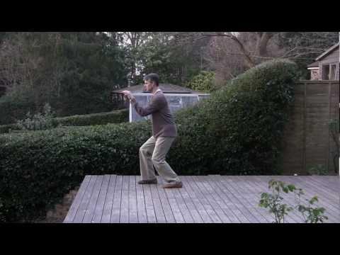 Wu Style Tai Chi Short Form by Paul Cavel of Islington, London