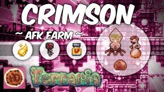 Terraria AFK Underground Crimson Ichor Farm