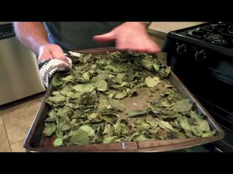Drying and Storing Basil