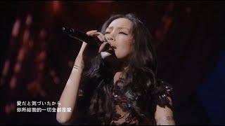 中島美嘉 - Dear