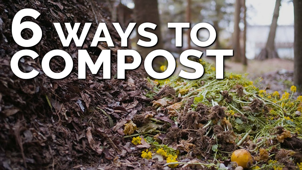 6 Different Ways To Compost, No Matter Where You Live