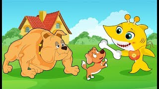 Baby Shark Keeps Running from Giant Dog New Episodes! Baby Shark Song and Nursery Rhymes