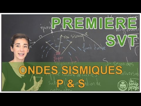 Ondes sismiques p et s svt 1 re s les bons profs - Le sel et les ondes negatives ...
